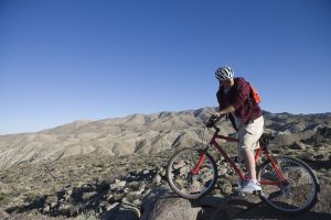 Physical Benefits of Mountain Biking