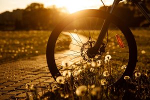 How to True a Bike Wheel With Disc Brakes [Guest Post]