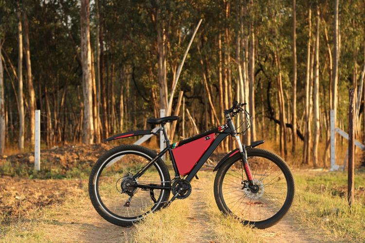 Is it worth getting an electric bike